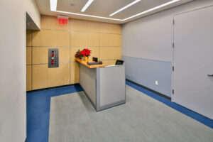 NYU - Dental Hygiene Department featured image